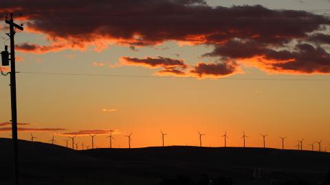 Wind turbines stretch across a hill in Eastern Washington. Photo: Jolayne Houtz.
