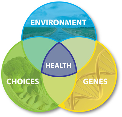 This graphic shows 3 overlapping circles in different colors. The blue is labeled with Environment, the green with choices, and the yellow with genes. They overlap in the center to create a purple area labeled health