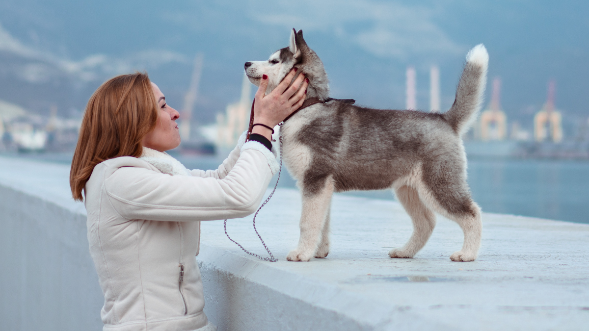 A woman purses her mouth while touching the neck of a husky dog standing on a harbor wall.