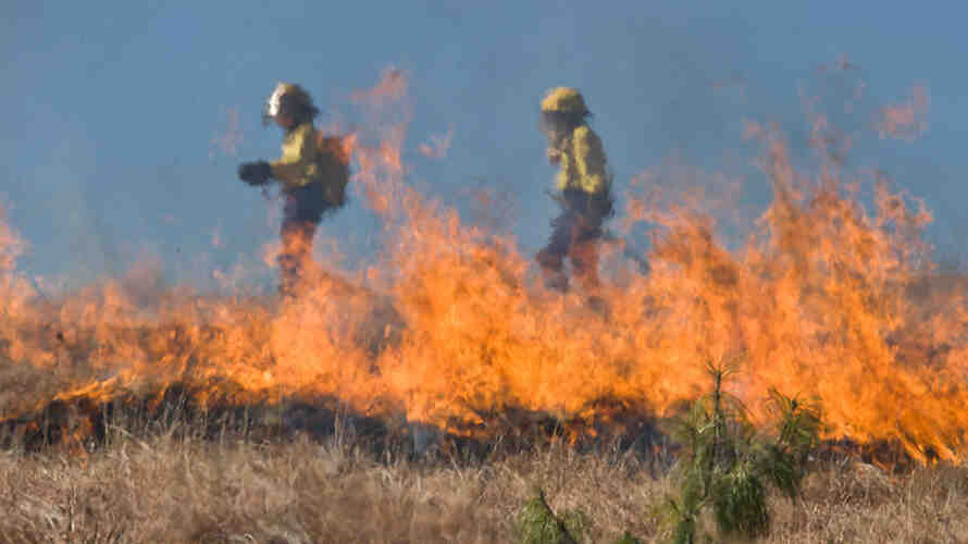 Two firefighters at the scene of a grass fire.