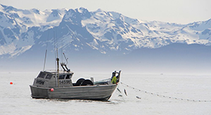 Most fishermen on the Copper River use a bowpicker boat. Photo: Copper River Prince William Sound Marketing Association.