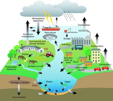 environmental health news department of environmental