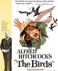 "Original movie poster from Alfred Hitchcock's ""The Birds."""