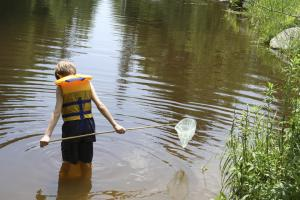 Photo of boy wading in water with a fish net.