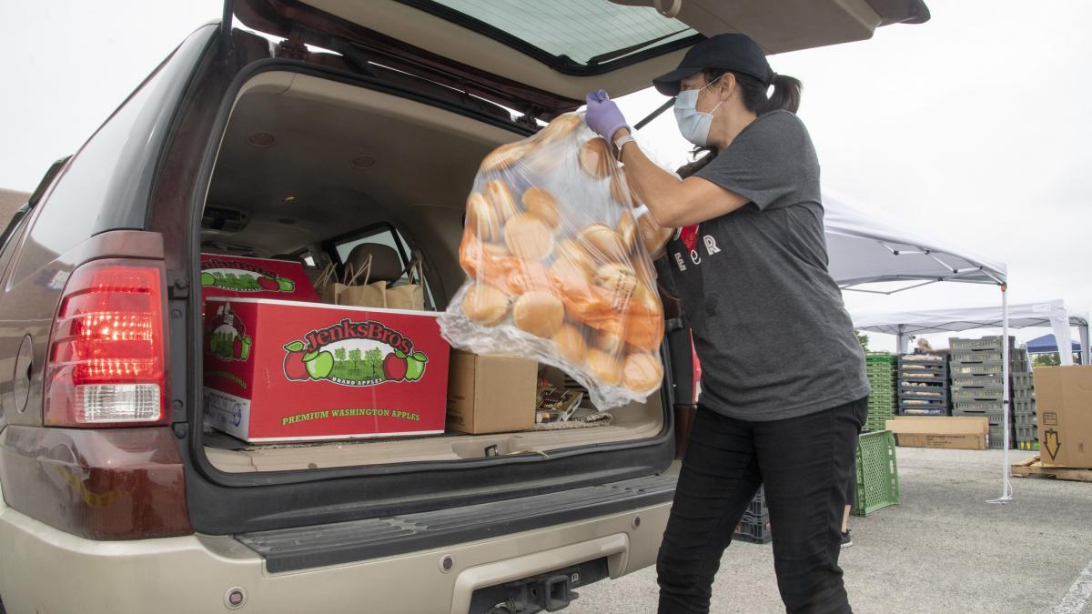 Person in parking lot loading a bag of rolls into the back of a car filled with boxes and bags of food, including a box of Washington apples.
