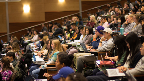 UW students listen to a lecture in a lecture hall.