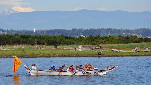 A group of Swinomish Tribe members paddles a traditional canoe near a shoreline.