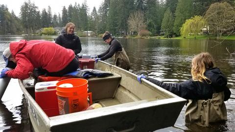 4 students launch a boat to take samples from Lake Killarney.  Two students are in the boat, two students are in the water wearing waders and are pushing the boat out into the lake.