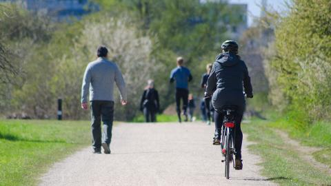 Walkers, joggers and bikers share a walking path in a park.