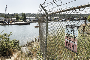 Sign along the Duwamish River. Photo courtesy Tom Reese